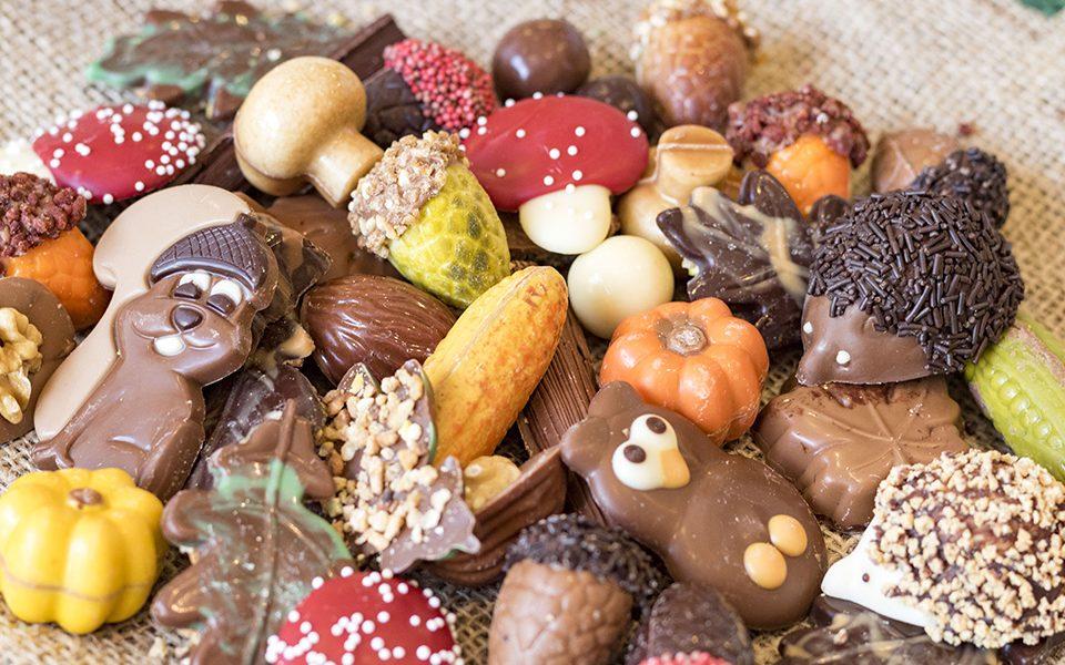 Herfst chocolade
